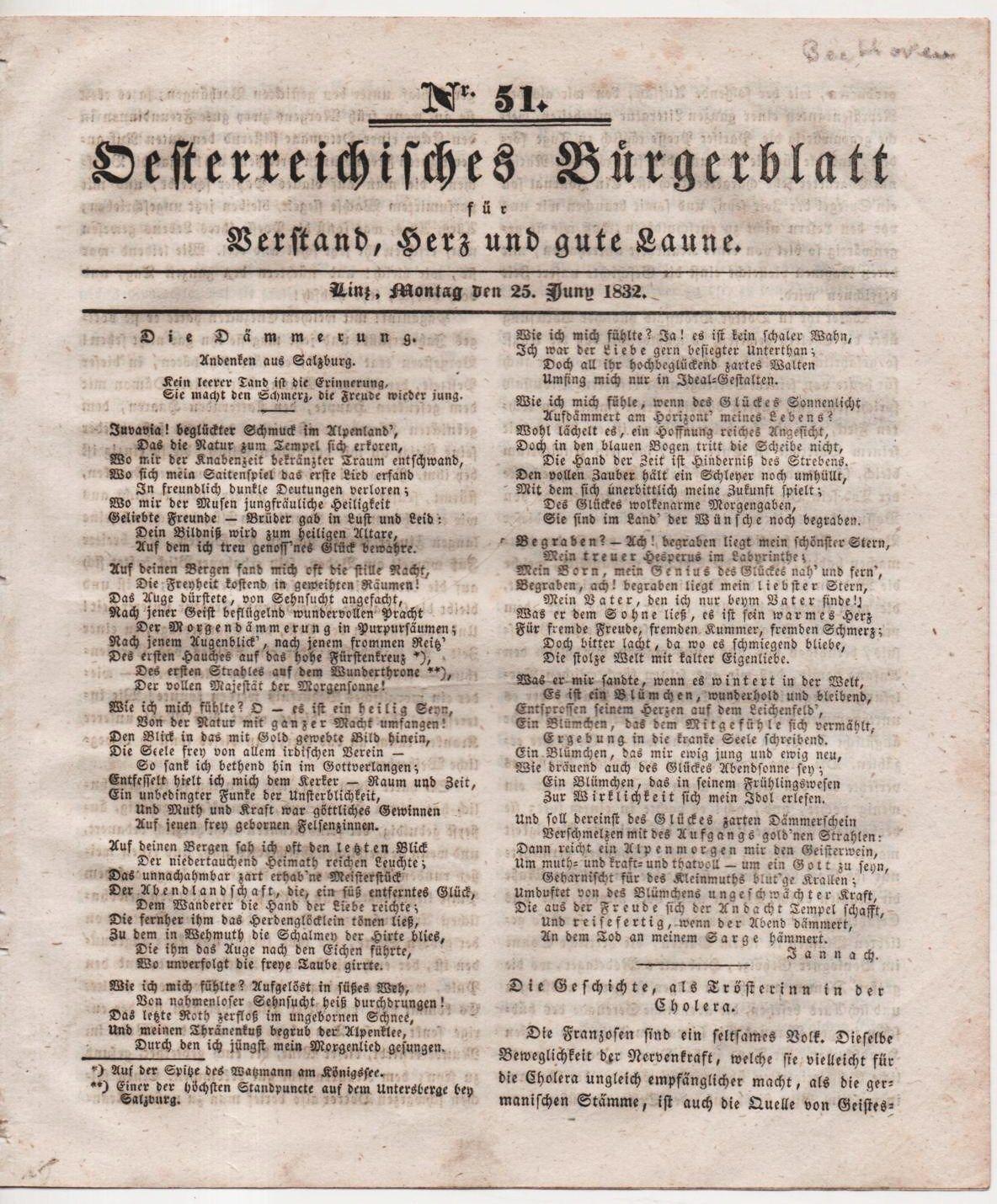 Burgblatt,